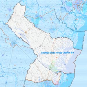Georgia State House Legislative District 167