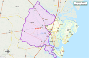 Glynn County Commission Map District One (1)