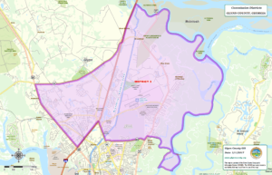 Glynn County Commission Map District Three (3)